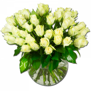 Blanc Pur  40 Roses Par Occasion > Fleurs Saint Valentin