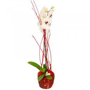 Orchidée Phalaenopsis décorée Magnifique orchidée phalaenopsis décorée selon l'inspiration de notre artisan fleuriste  Plantes