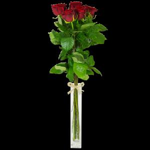 Rouge passion 15 Roses Par Occasion Fleurs Saint Valentin