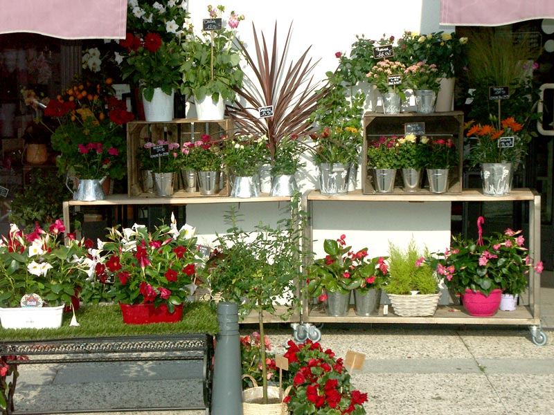 boutique-de-fleur-saint-jean-en-royans