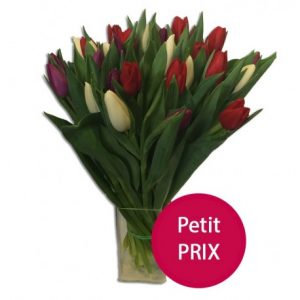 bouquet-de-tulipes-multicolores