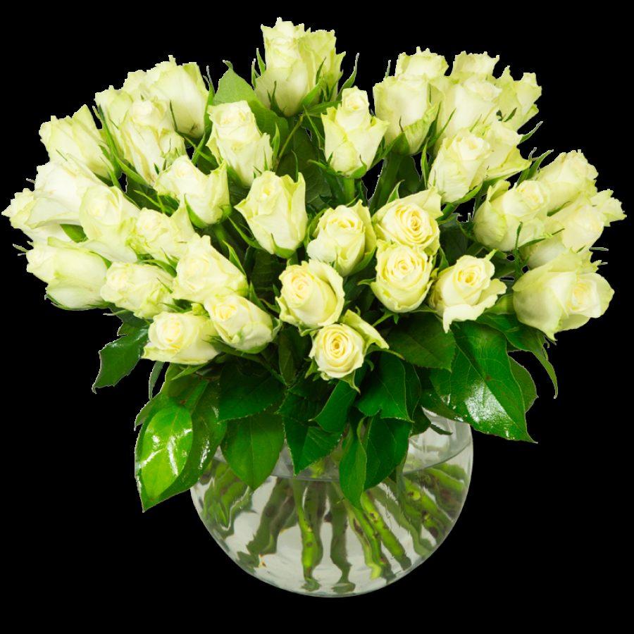 Blanc Pur  40 Roses Par Occasion ></noscript> Fleurs Saint Valentin