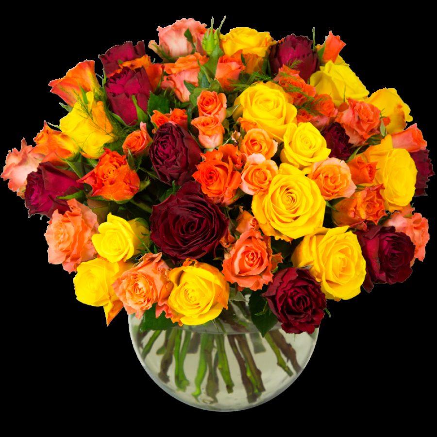 Exhubérance de Rose Opulente brassée de roses aux couleurs flamboyantes