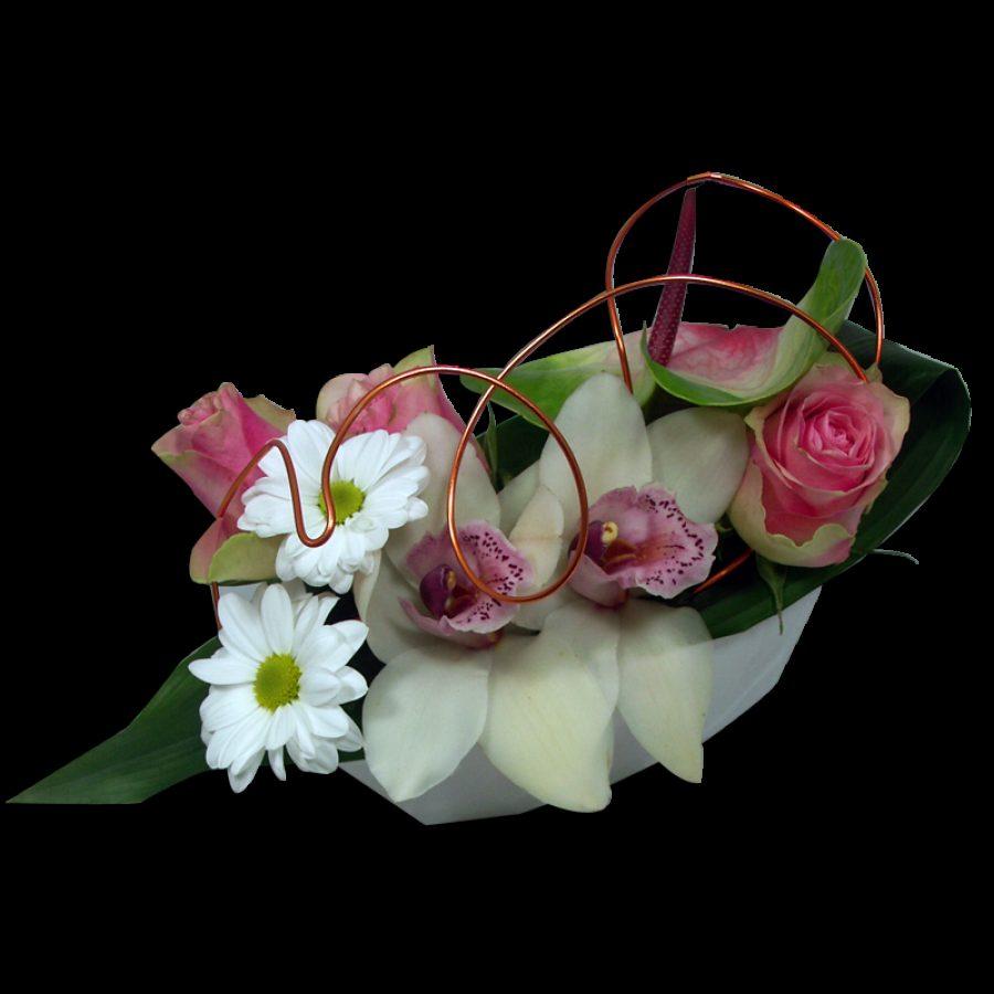 Prélude Composition rafraichissante d'Orchidée