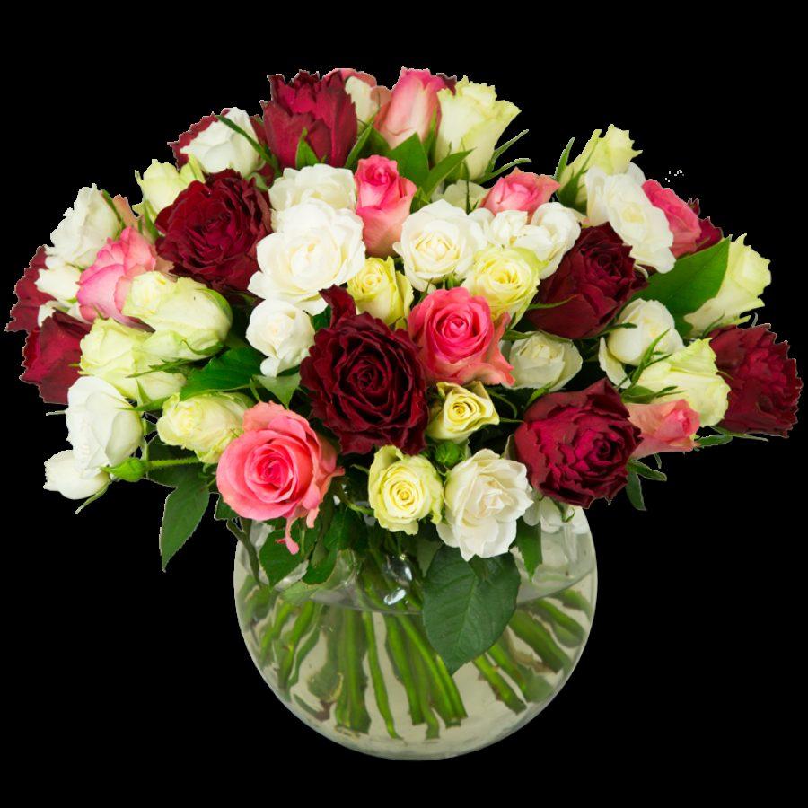 Symphonie de Rose Laissez-vous emporter dans ce tourbillon de roses petits et gros boutons aux notes blanches
