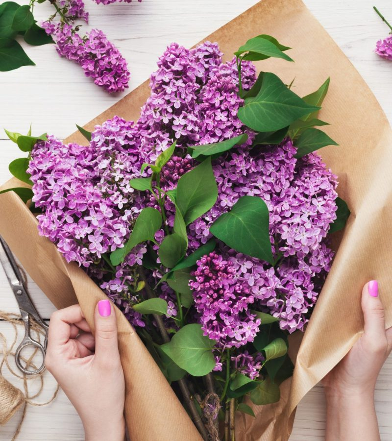 arranging-lilac-flowers-bouquet-florist-at-work-DB7GH63