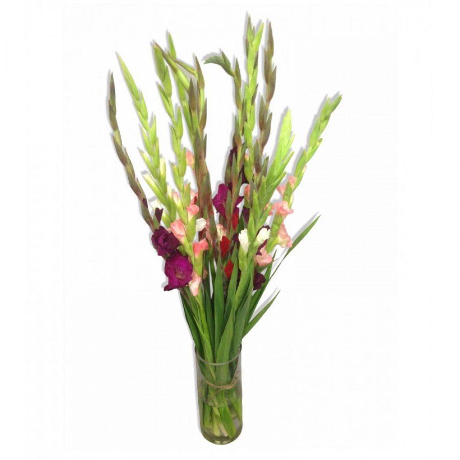 bouquet-de-glaieuls-livraison-a-domicile