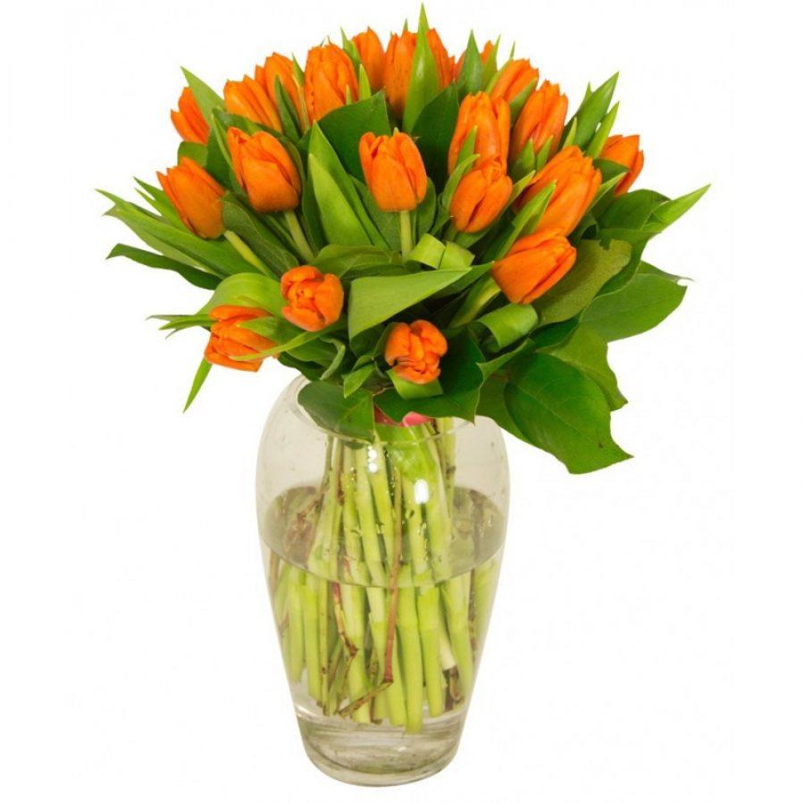 bouquet-de-tulipes-oranges