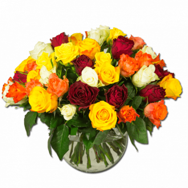 cocktail-exaltant-roses-multicolores fleurs