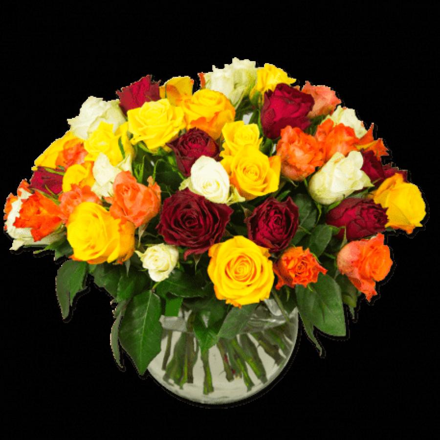 cocktail-exaltant-roses-multicolores fleurs